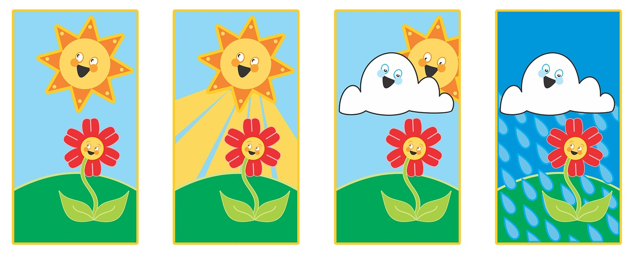 IL SOLE E LA FOTOSINTESI